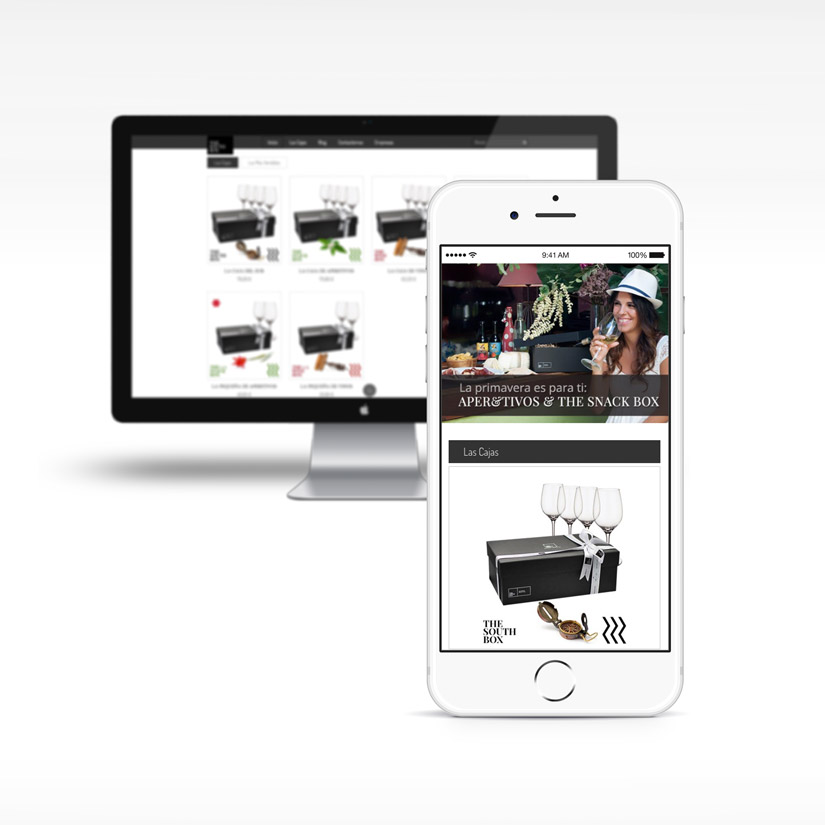 Diseño Web Tienda Ecommerce The South Box