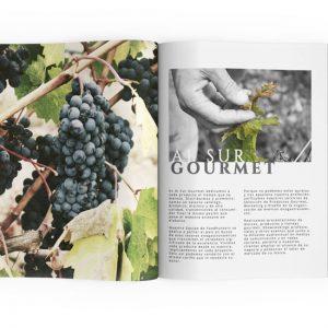 diseño web y tienda de vinos de al sur gourmet fotos