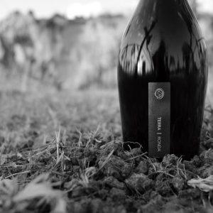 Samsara Wines Dosier de Vinos Terra