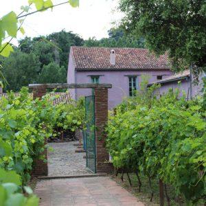 fábrica de hojalata ronda vinos al sur estudio