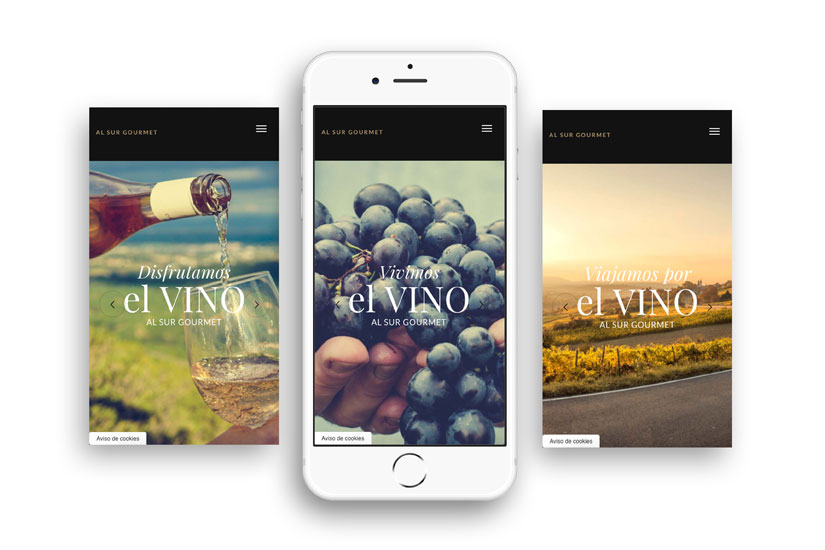 Diseño Web y Tienda de Vinos de Al Sur Gourmet