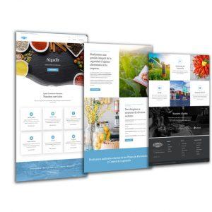 Algadir Consultoría Alimentaria Diseño Web